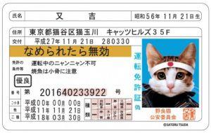 記事番号:29943/アイテムID:506014の画像